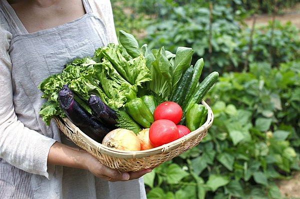 カヌマ大学『家庭菜園概論 ~野菜栽培の本当をお伝えします~』